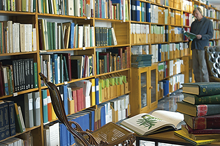 Georg Wikman i biblioteket
